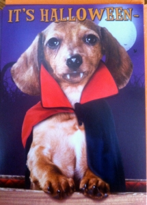 No, Jake is not the model for this greeting card.